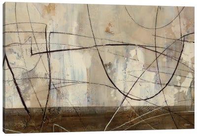Across the Desert III Canvas Art Print