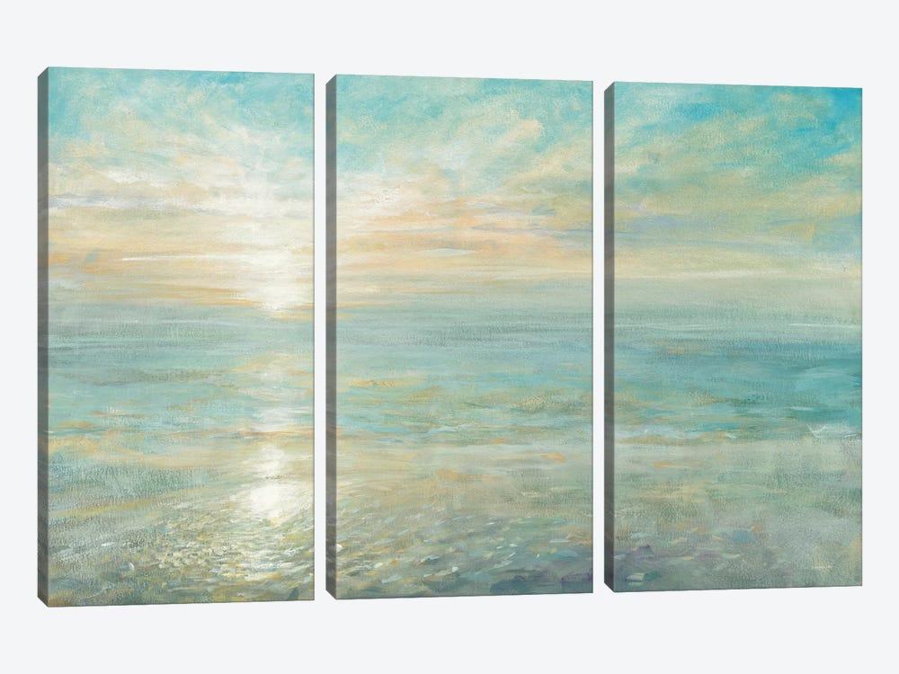 Sunrise by Danhui Nai 3-piece Canvas Art Print