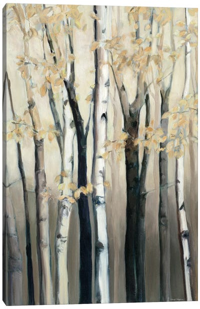 Golden Birch I Canvas Art Print