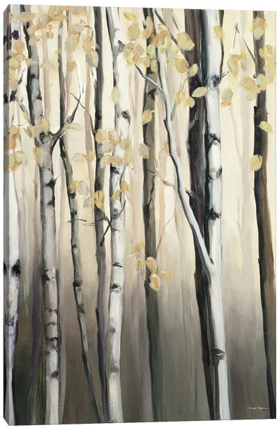 Golden Birch II Canvas Art Print