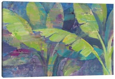 Bermuda Palms Canvas Print #WAC3772