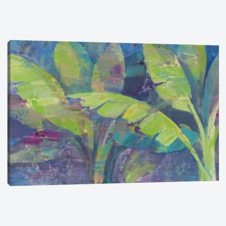 Bermuda Palms Canvas Print #WAC3772} by Albena Hristova Canvas Art