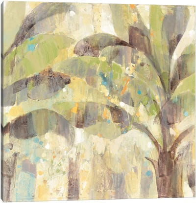 Bimini II Canvas Print #WAC3774
