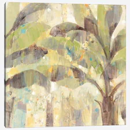 Bimini II Canvas Print #WAC3774} by Albena Hristova Art Print