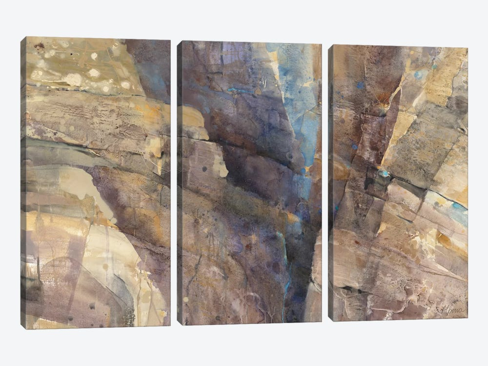 Canyon II by Albena Hristova 3-piece Canvas Art