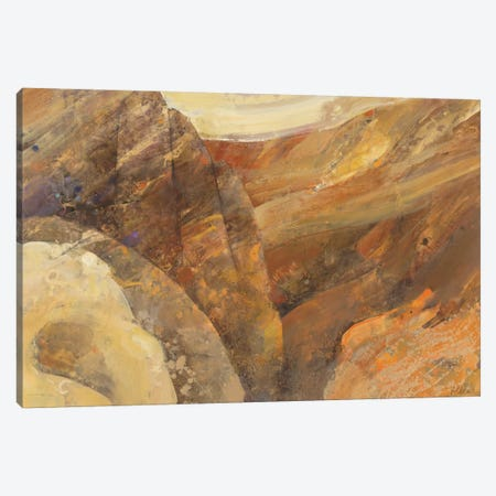 Canyon VII Canvas Print #WAC3777} by Albena Hristova Canvas Print