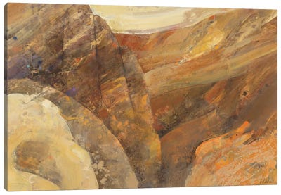 Canyon VII Canvas Art Print
