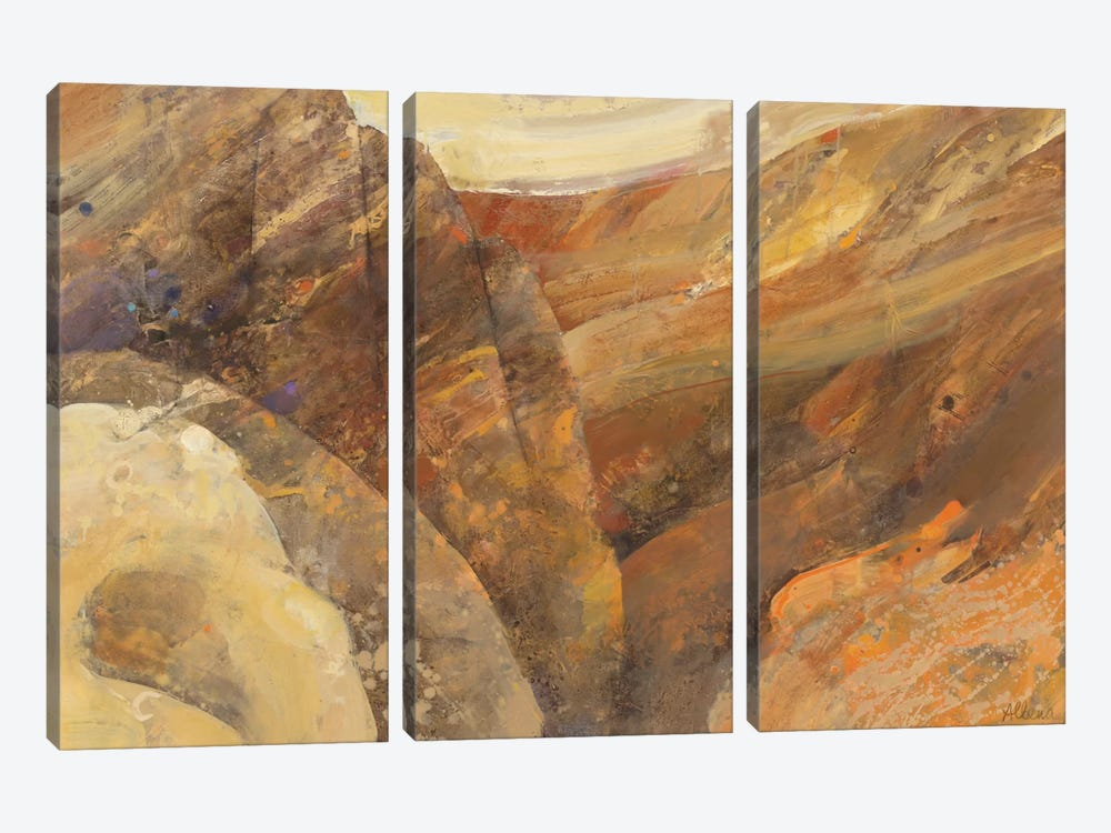 Canyon VII by Albena Hristova 3-piece Canvas Print