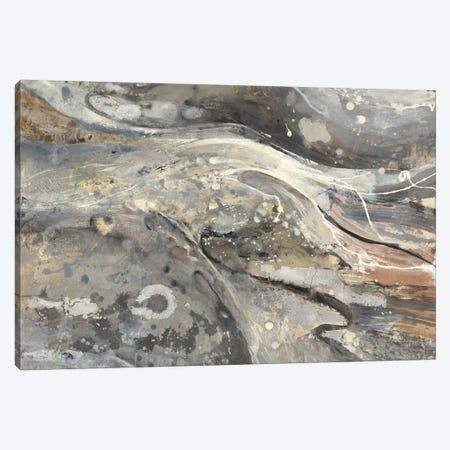 Minerals III Canvas Print #WAC3782} by Albena Hristova Canvas Print