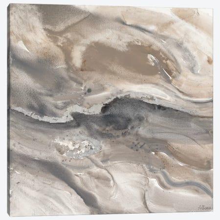 Minerals III Canvas Print #WAC3783} by Albena Hristova Canvas Art Print