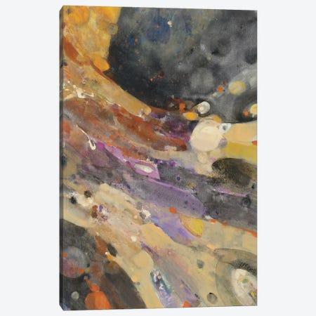 The Falls II Canvas Print #WAC3792} by Albena Hristova Canvas Artwork