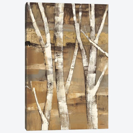 Wandering Through the Birches I Canvas Print #WAC37} by Albena Hristova Canvas Art Print