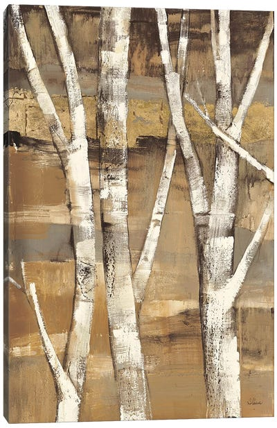 Wandering Through the Birches I Canvas Art Print