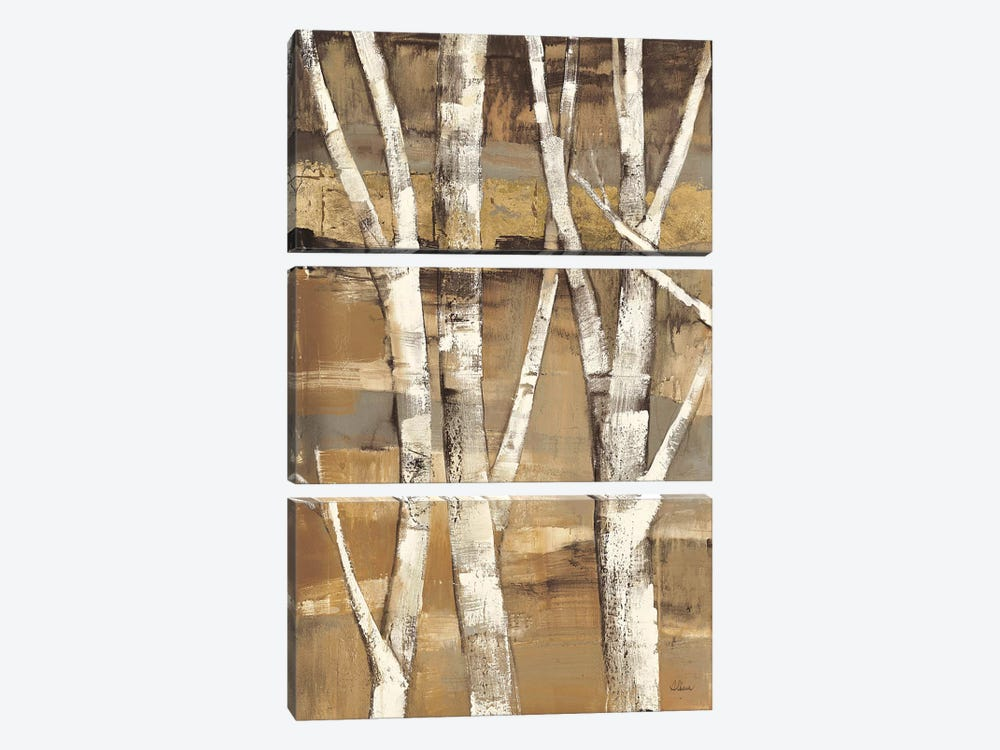 Wandering Through the Birches I by Albena Hristova 3-piece Canvas Artwork