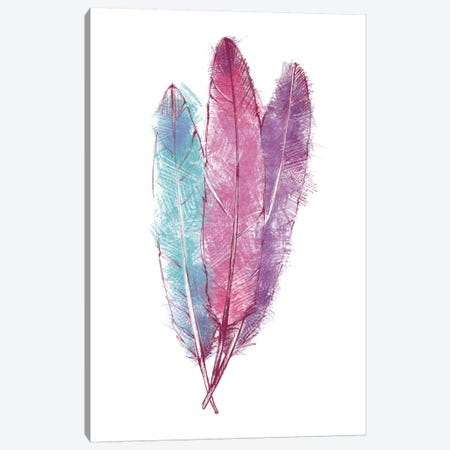Bohemian Feather I Canvas Print #WAC3804} by Avery Tillmon Canvas Print