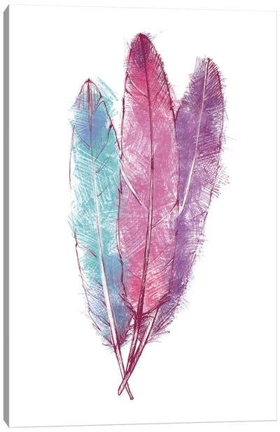Bohemian Feather I Canvas Art Print