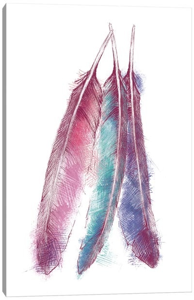 Bohemian Feather V Canvas Art Print