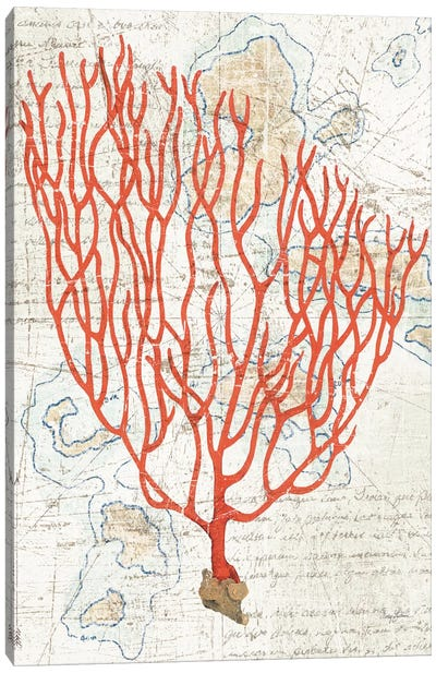 Textured Coral IV Canvas Art Print