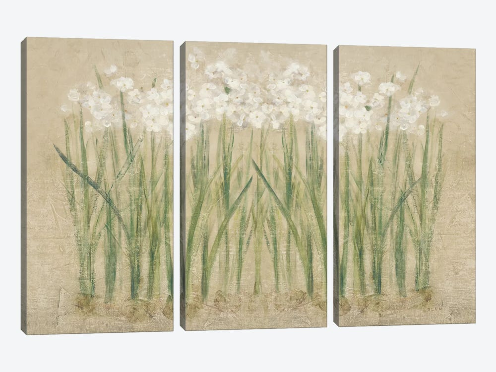 Narcissus Cool  by Cheri Blum 3-piece Canvas Art