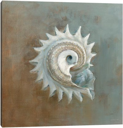 Treasures From The Sea III Canvas Art Print