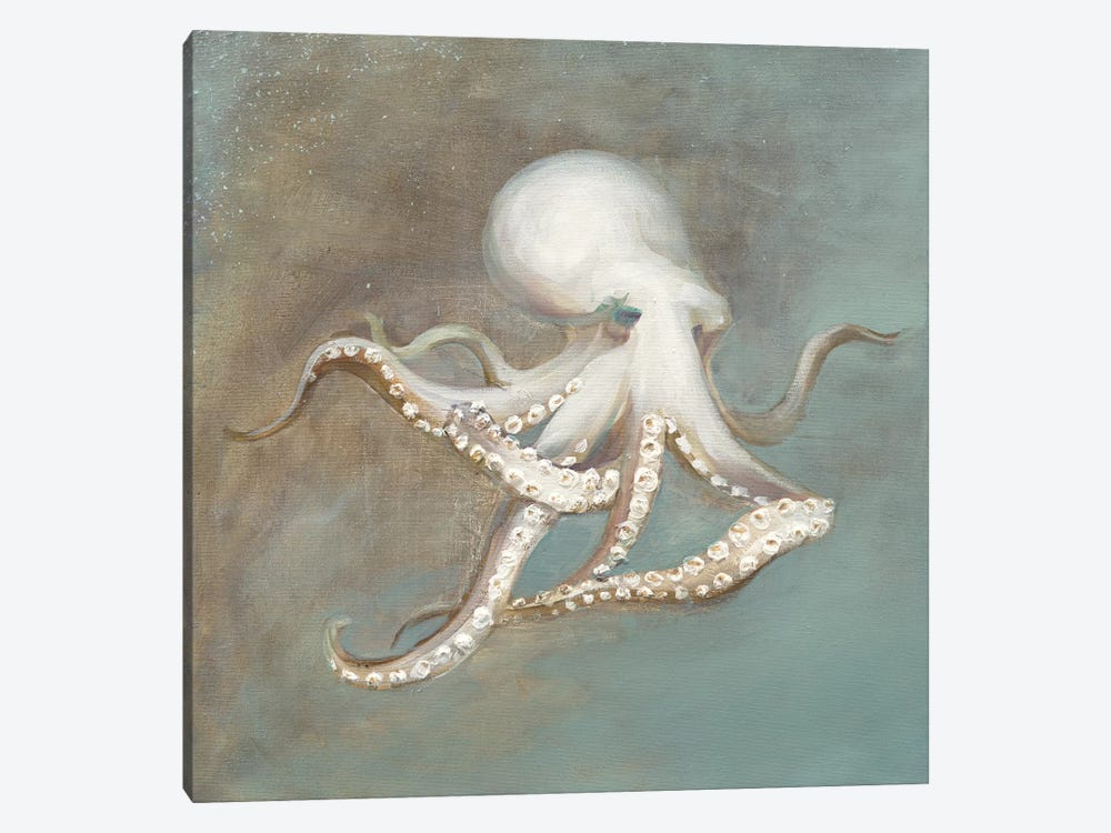 Treasures from the Sea V by Danhui Nai 1-piece Canvas Artwork