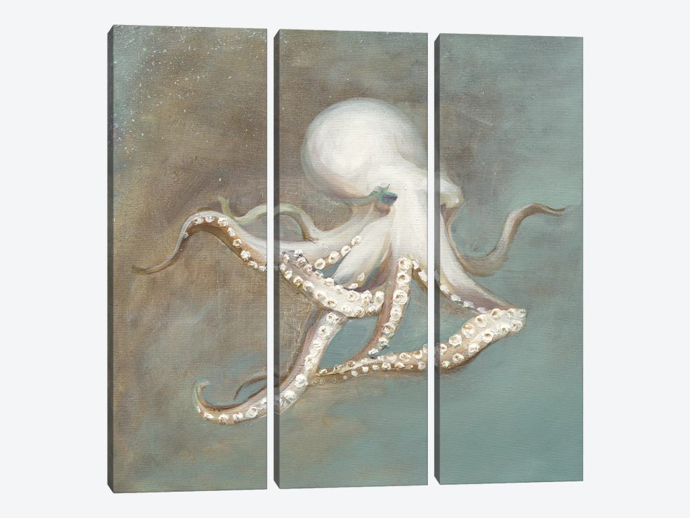 Treasures from the Sea V by Danhui Nai 3-piece Canvas Artwork