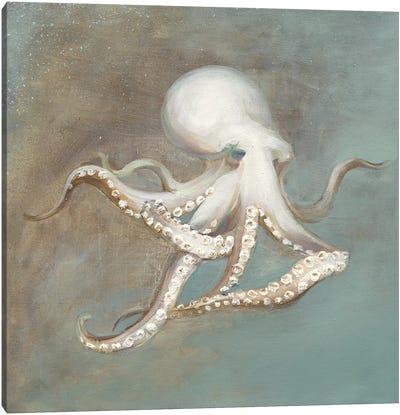 Treasures from the Sea V Canvas Art Print