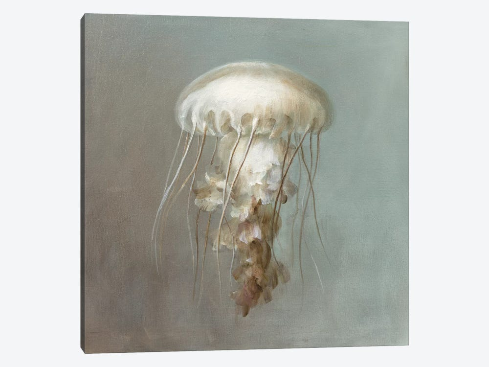 Treasures from the Sea VI by Danhui Nai 1-piece Art Print