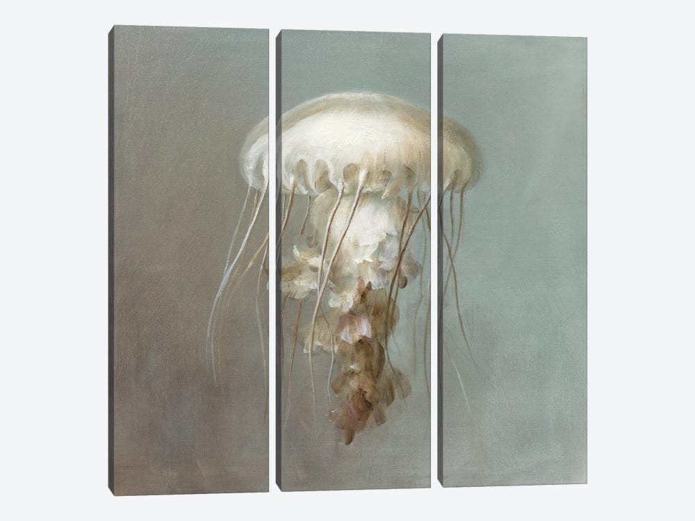 Treasures from the Sea VI by Danhui Nai 3-piece Canvas Art Print