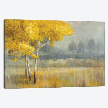 Yellow Landscape Canvas Print #WAC3847} by Danhui Nai Canvas Print