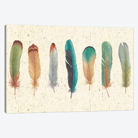 Feather Tales VII Canvas Print #WAC3852} by Daphne Brissonnet Canvas Print