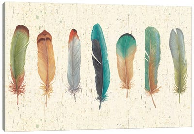 Feather Tales VII Canvas Art Print