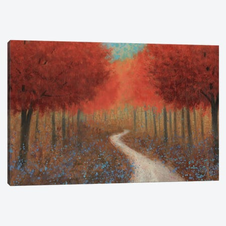 Forest Pathway Canvas Print #WAC3870} by James Wiens Canvas Art Print