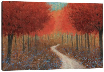 Forest Pathway Canvas Art Print