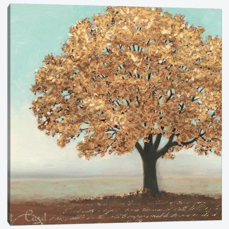 Gold Reflections I Canvas Print #WAC3871} by James Wiens Art Print