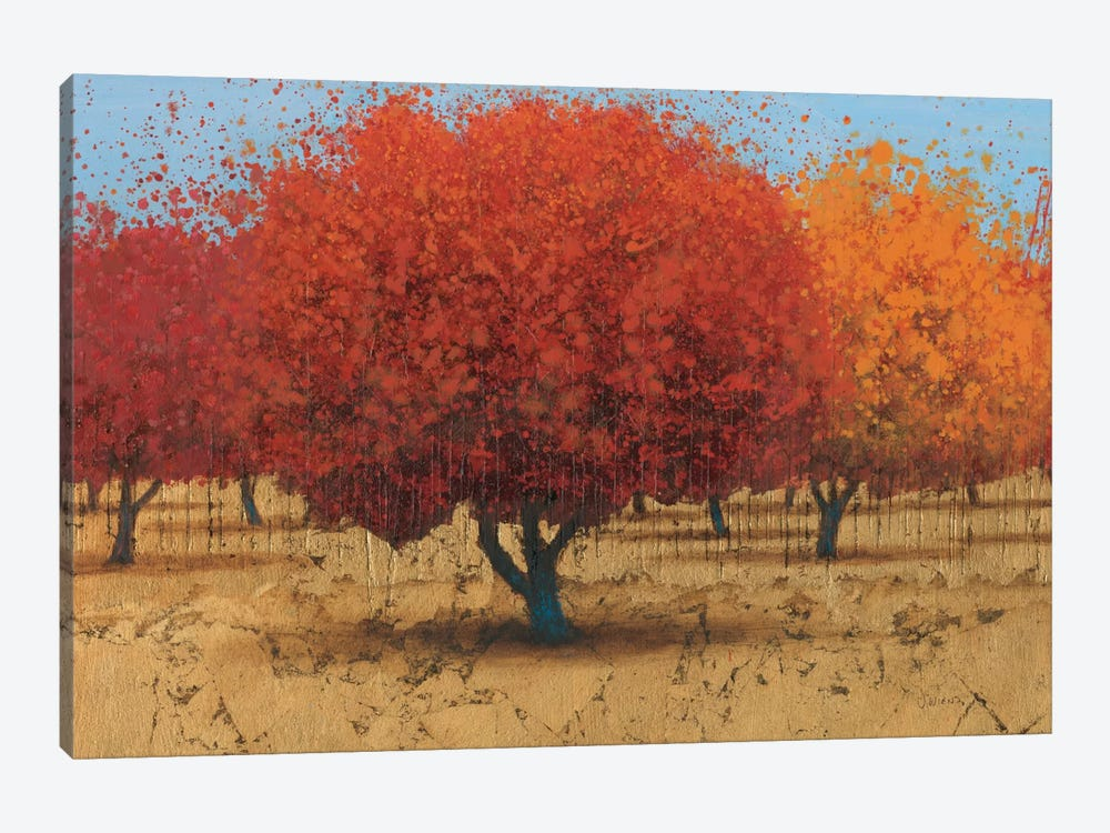 Orange Trees II by James Wiens 1-piece Canvas Art