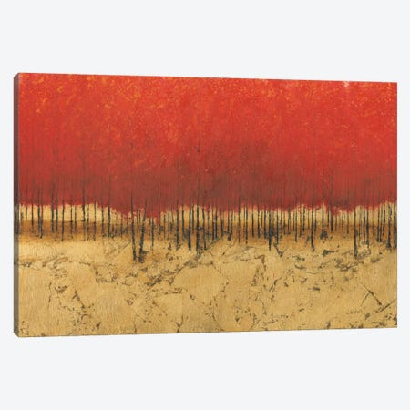Orange Trees III Canvas Print #WAC3875} by James Wiens Canvas Wall Art