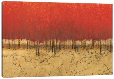 Orange Trees III Canvas Art Print