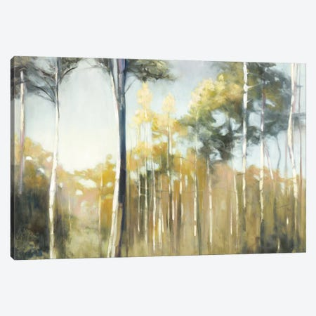 Aspen Reverie Canvas Print #WAC3877} by Julia Purinton Canvas Artwork