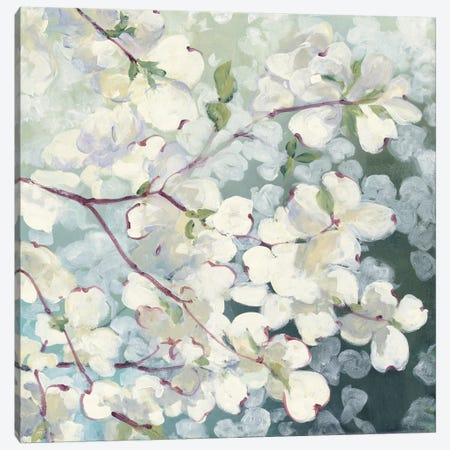 Magnolia Delight Canvas Print #WAC3880} by Julia Purinton Canvas Artwork