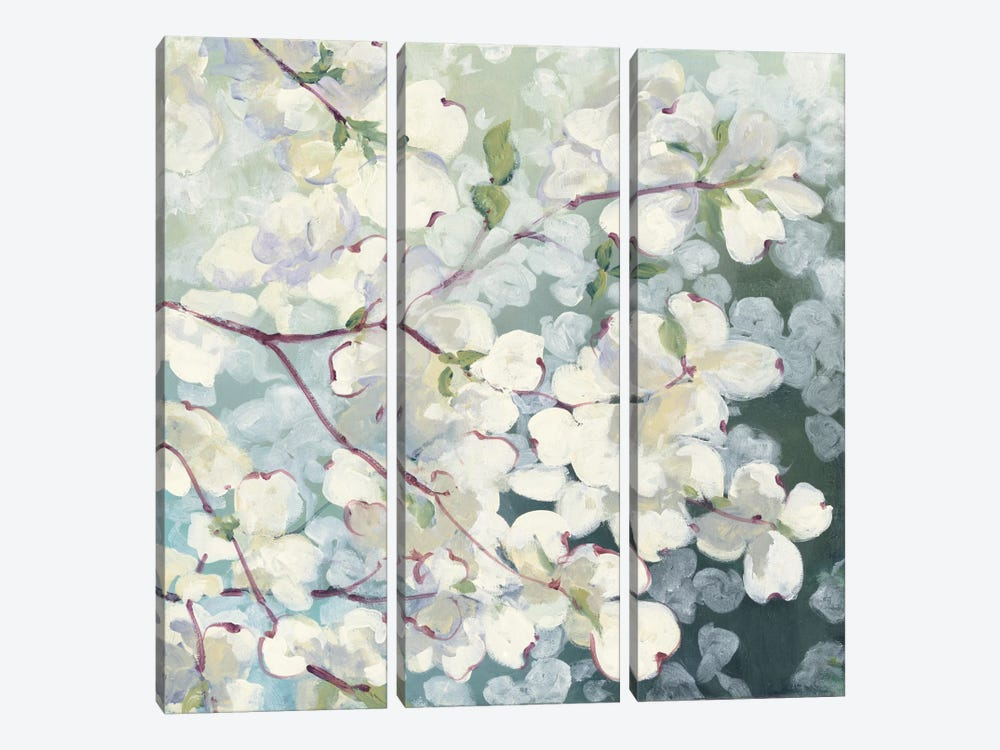 Magnolia Delight by Julia Purinton 3-piece Canvas Art Print