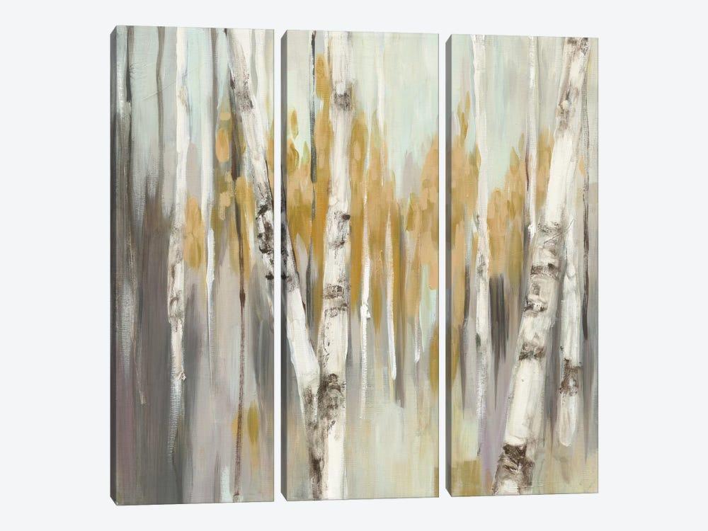 Silver Birch I by Julia Purinton 3-piece Canvas Art