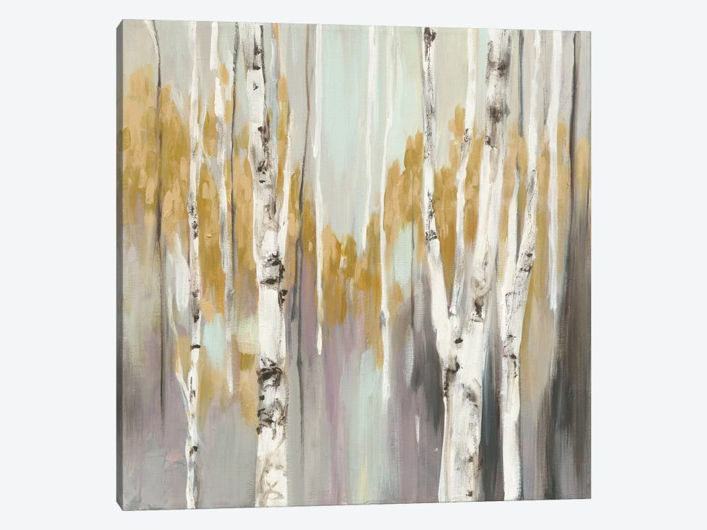 Silver Birch II by Julia Purinton 1-piece Canvas Art Print