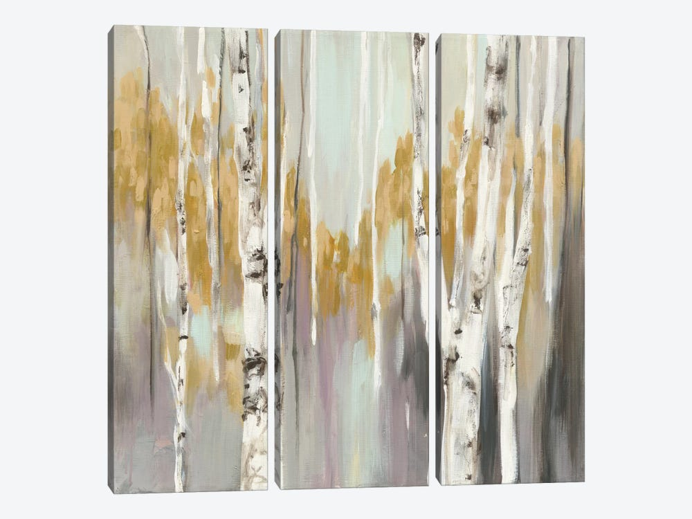 Silver Birch II by Julia Purinton 3-piece Art Print