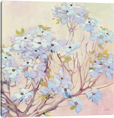 Spring Dogwood II Canvas Art Print