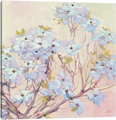 Spring Dogwood II Canvas Art Print