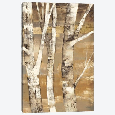 Wandering Through the Birches II Canvas Print #WAC38} by Albena Hristova Canvas Artwork