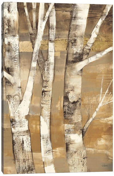 Wandering Through the Birches II Canvas Print #WAC38
