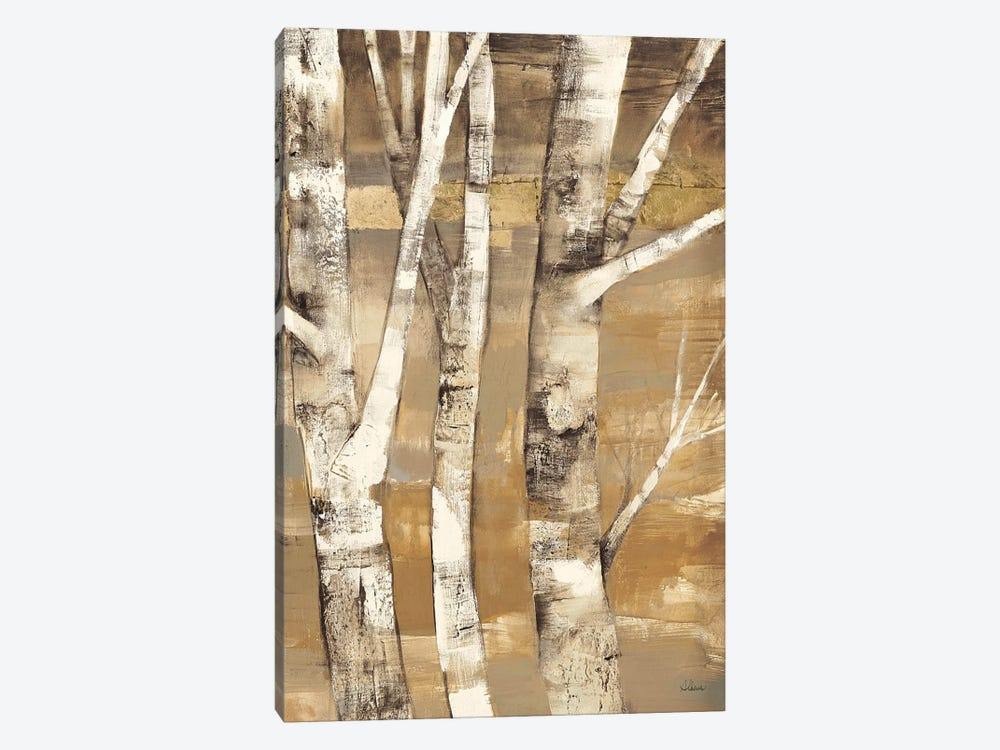 Wandering Through the Birches II by Albena Hristova 1-piece Canvas Art Print