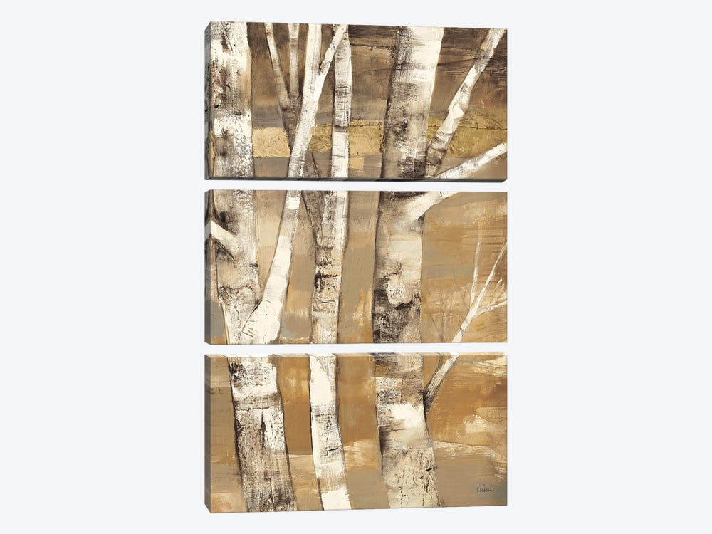 Wandering Through the Birches II by Albena Hristova 3-piece Art Print